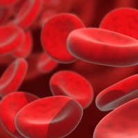 Red blood cells grown in a lab to be trialled in humans
