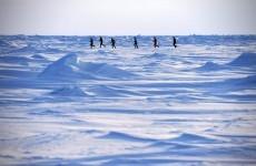 Carlow brothers complete Arctic marathon