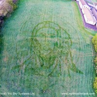 No, it's not an Easter apparition. This face of Jesus in a field in Drogheda is art