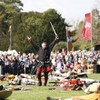 Over 20,000 turn out for Battle of Clontarf festival