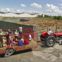 16 bizarre sights captured by Google Earth in Ireland