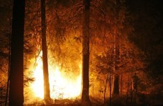 Wildfires rage across eastern Russia