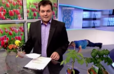 TV staffer goes into stealth mode when he realises he's on camera