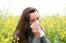 Suffer from hay fever? We have some bad news