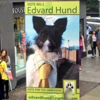 Meet the most adorable election candidate in Dublin