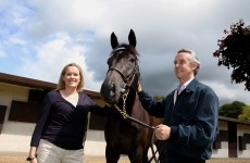 The story of the Irish scientist leading a horse racing revolution