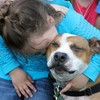 Family lose dog during Hurricane Sandy, find it almost two years later in a pound