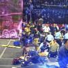 Nine 'hairialists' injured in circus fall