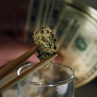 Cannabis growers in Colorado are struggling for financing, could co-ops be the answer?