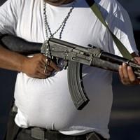Mexican vigilantes can now legally fight cartels
