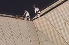 VIDEO: Man rescued from top of Sydney Opera House after climbing onto the roof