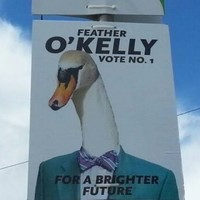Bray has some very unusual local election candidates