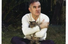 6 surefire ways to make Morrissey lose his cool on Twitter