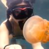 """Girl goes diving in lake full of jellyfish, we say """"NOPE"""""""