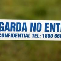 Gardaí arrest 60-year-old man after stabbing in Wexford