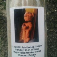 Can you help find this lost teddy bear in Dublin?