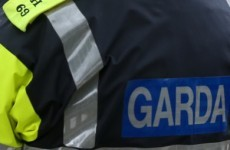 Armed gardaí arrest man after armed robbery in Tipperary