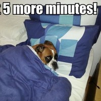 12 problems only chronically late people will understand