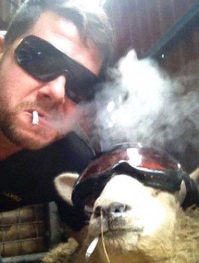 10 farm selfies that prove the word 'felfie' should be in the dictionary