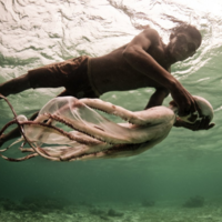 Incredible shots of the last nomads who spend their entire lives at sea