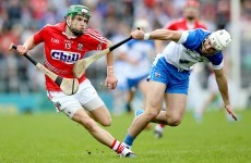 Analysis: How Alan Cadogan and Austin Gleeson made their senior hurling mark