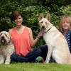 PAWS animal rescue to lose thousands of euro in donations due to bank closure