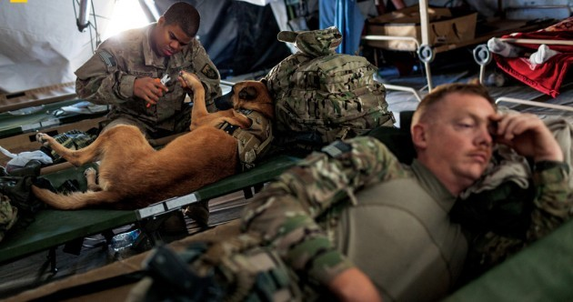 Photos show the special bond between combat dogs and their handlers