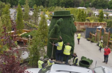 Here's exactly how much effort went into Mr Tayto's bush