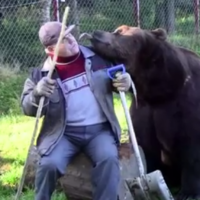 Sulo and his bears have the friendship you wish you had