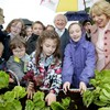 €750,000 worth of plants, 20 sheared sheep and one dancing Taoiseach: Bloom in numbers