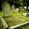 There needs to be more competition between graveyards, apparently