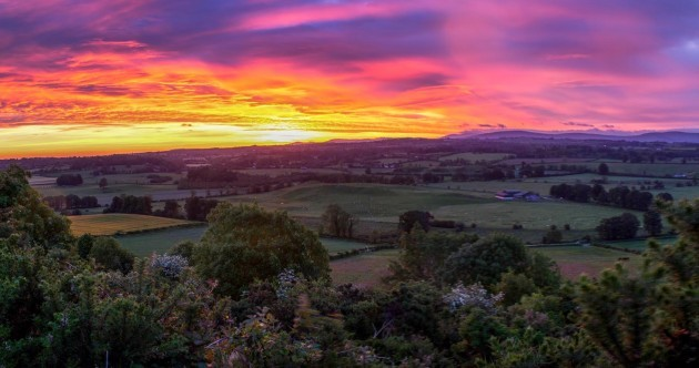 Did you see the sunrise this morning? It was pretty special in Wicklow...