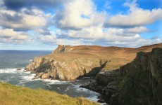 Irish seaweed exporters are making it big in Japan