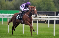 Aidan O'Brien says Australia is the best Derby horse he's ever had - now he has to prove it