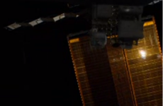 This is the first Vine ever to be sent from Space