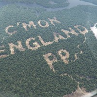 UPDATE: Paddy Power did not cut down a single Amazonian tree