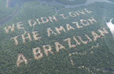 UPDATE: Paddy Power confirm rainforest stunt was computer wizardry