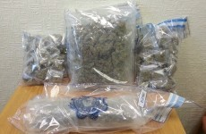 Gardaí seize €40k of cannabis in Longford raid