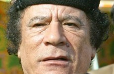 Gaddafi vows to 'fight to the death '