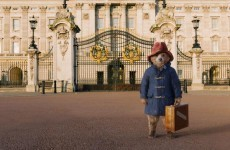 The live-action Paddington Bear is freaking everybody out