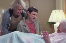 We watched the new Dumb and Dumber trailer so you don't have to