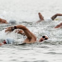 Sports you should definitely try this summer... open water swimming
