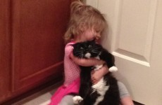 16 reasons children and pets are a magic combination