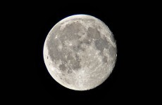 Man arrested for trying to shoot the moon