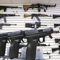 Should Ireland have a firearms licensing body?