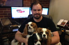 This man gets paid €33 an hour to run social media for three dogs