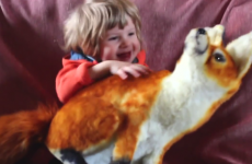 These adorable Irish kids don't know what a fox and a badger is