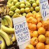 "Lidl ""at a loss"" to explain 'fruit whispering' signs, as more appear"