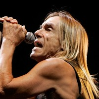 Amnesty International apologises to Iggy Pop over 'Justin Bieber' ad