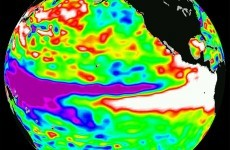 There's a 60 - 88% chance weather phenomenon 'El Niño' will strike this year